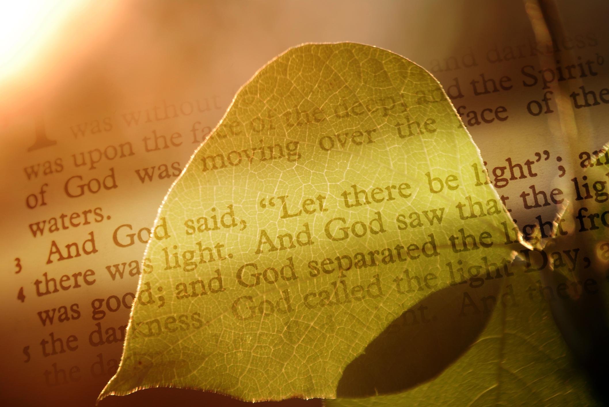 פרשת בראשית בראי פילוסופי