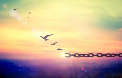 #אקרופוליסמהבית | הרצאות און ליין – מעבדות לחירות